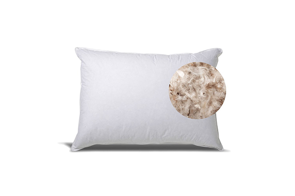 exceptional-sheets-down-pillow