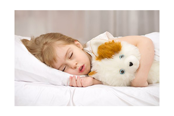 kinder-fluff-toddler-pillow