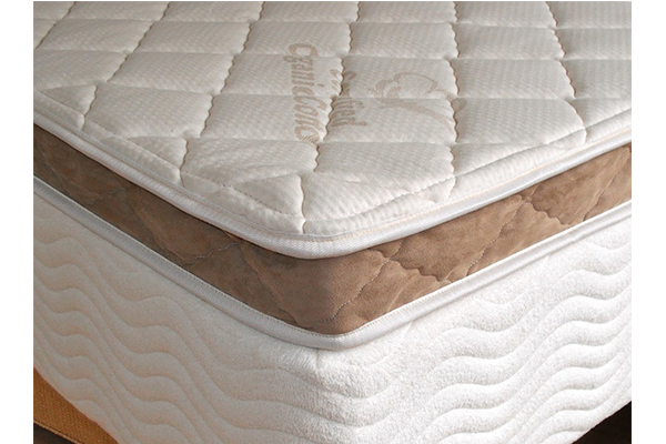 pure-talalay-latex-foam-mattress-pad