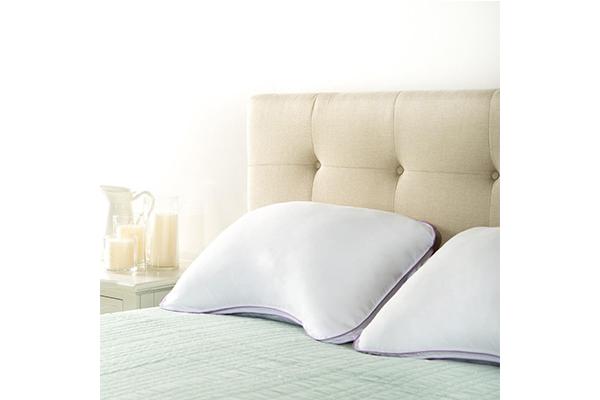 zinus-deluxe-shoulder-pillow